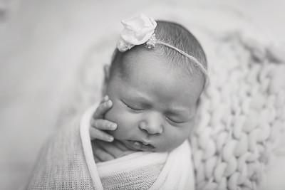 Kaylyn NewbornBW-11