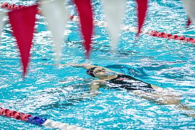NCAA Women's Swimming   Houston Cougars v Tulane Green Wave
