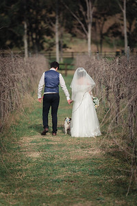 Bride-and-Groom_She_Said_Yes_Wedding_Photography_Brisbane_0489