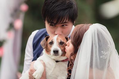 Bride-and-Groom_She_Said_Yes_Wedding_Photography_Brisbane_0473