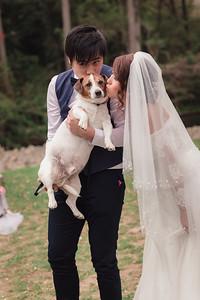 Bride-and-Groom_She_Said_Yes_Wedding_Photography_Brisbane_0472