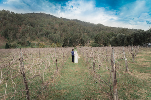 Bride-and-Groom_She_Said_Yes_Wedding_Photography_Brisbane_0478