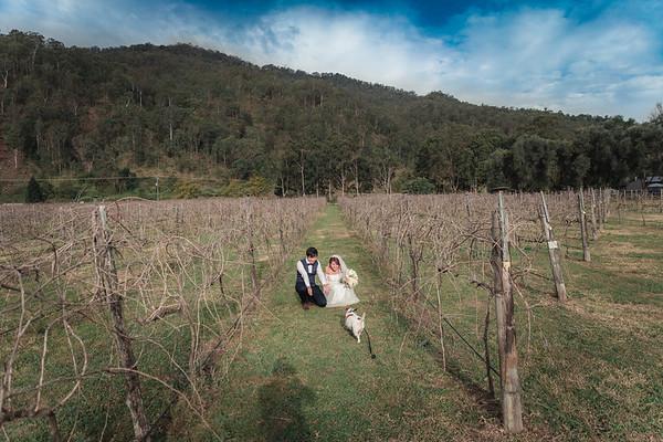 Bride-and-Groom_She_Said_Yes_Wedding_Photography_Brisbane_0487