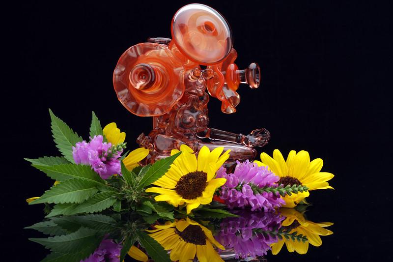 Banjo Glass -63