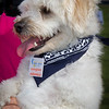 Canadian Cancer Society - Bark for Life 2013