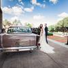 558_Ceremony_She_Said_Yes_Wedding_Photography_Brisbane