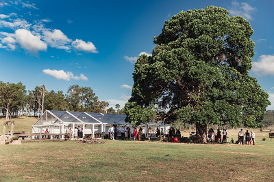 743_Cocktail_Hour_She_Said_Yes_Wedding_Photography_Brisbane