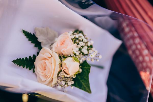 4_Catherine_and_John_She_Said_Yes_Wedding_Photography_Brisbane