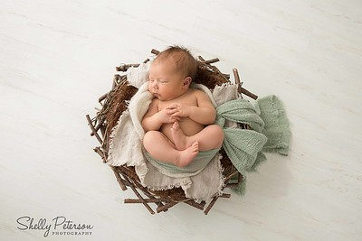 Nest on White Wood Studio Floor - Green Color Palette For babies up to 2 weeks of age