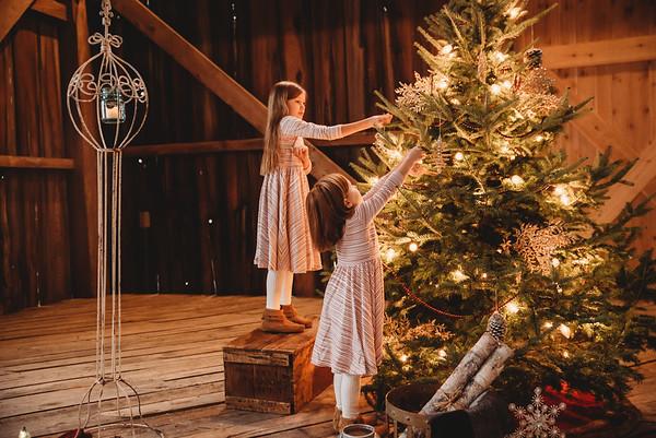 Christmas Minis 2017