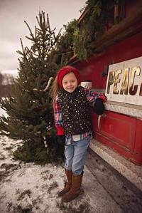 Christmas Minis-18