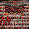 Leopard Band Composite