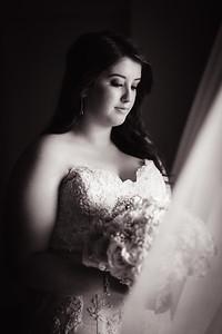 74_Demi-and-Haydn_She_Said_Yes_Wedding_Photography_Brisbane