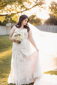 347_Demi-and-Haydn_She_Said_Yes_Wedding_Photography_Brisbane
