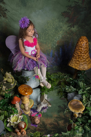 SUGAR PLUM FAIRIES0733