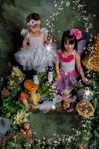 0748_fairy dust