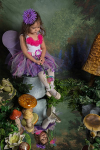 SUGAR PLUM FAIRIES0732