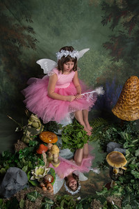 SUGAR PLUM FAIRIES0774