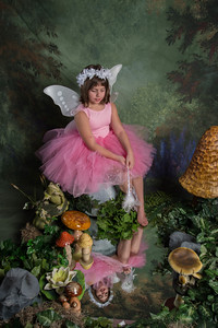SUGAR PLUM FAIRIES0779