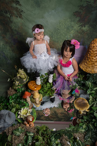 SUGAR PLUM FAIRIES0750