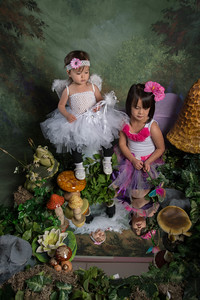SUGAR PLUM FAIRIES0752