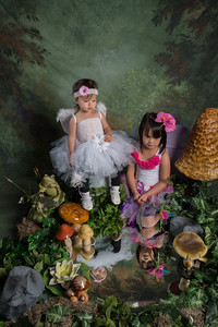 SUGAR PLUM FAIRIES0756