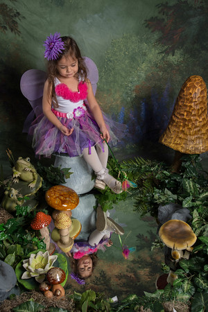 SUGAR PLUM FAIRIES0731