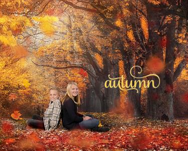16x20 Autumn Mistb