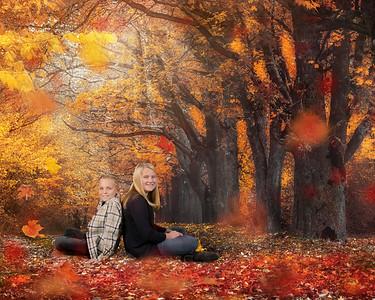 16x20 Autumn Mist