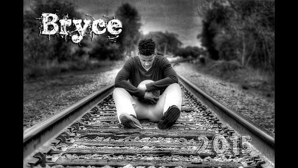 Bryce 2015