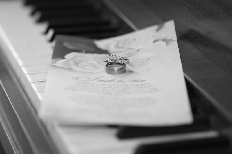 Hemmings Wedding 10528