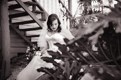 221_Ceremony_She_Said_Yes_Wedding_Photography_Brisbane