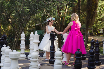 556_Cocktail-Hour_She_Said_Yes_Wedding_Photography_Brisbane