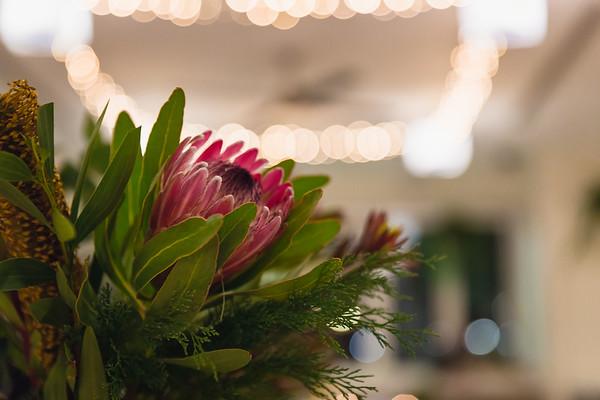 445_Reception-party_She_Said_Yes_Wedding_Photography_Brisbane