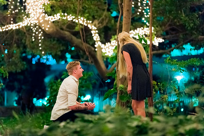 017_Surprise_Proposal_She_Said_Yes_Wedding_Photography_Brisbane