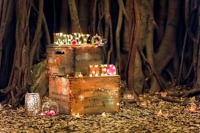 001_Surprise_Proposal_She_Said_Yes_Wedding_Photography_Brisbane