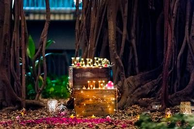 003_Surprise_Proposal_She_Said_Yes_Wedding_Photography_Brisbane