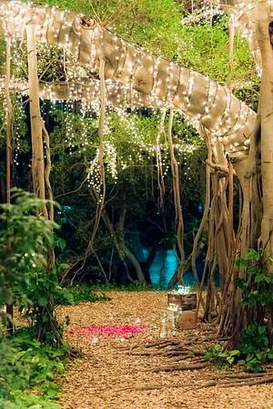 006_Surprise_Proposal_She_Said_Yes_Wedding_Photography_Brisbane