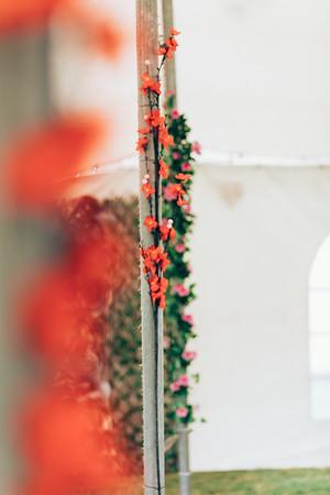 10_Megan_and_Aidan_She_Said_Yes_Wedding_Photography_Brisbane