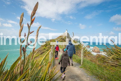 Nugget Point - Catlins, Otago