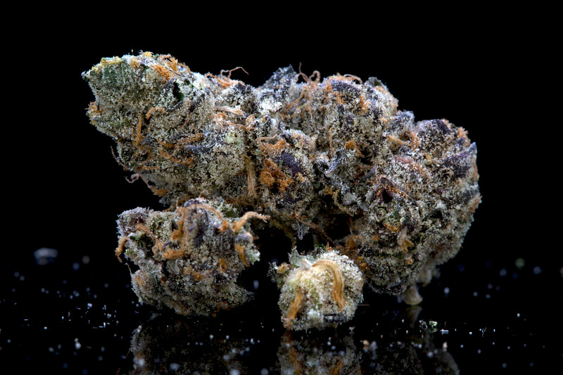 BR4A0456Galactic Cookies
