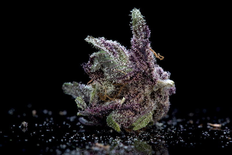 BR4A0532BB PURPS