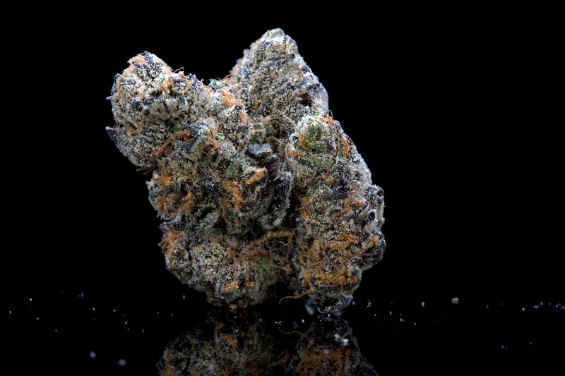 BR4A0450Galactic Cookies