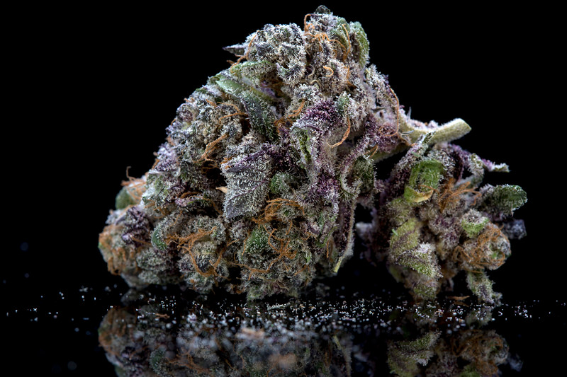 BR4A0529BB PURPS