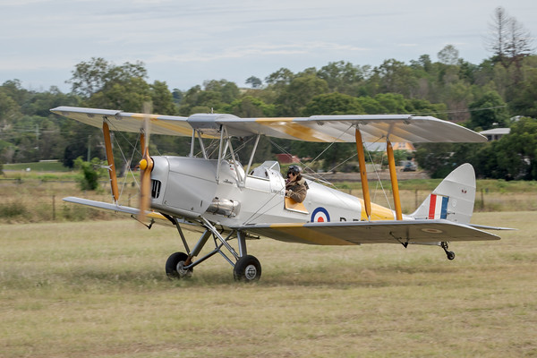 _7R46663 -  De Havilland DH.82A Tiger Moth VH-WII landing at the Airsport Qld breakfast fly-in.