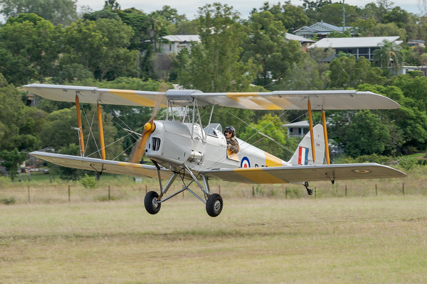 _7R46660 -  De Havilland DH.82A Tiger Moth VH-WII landing at the Airsport Qld breakfast fly-in.