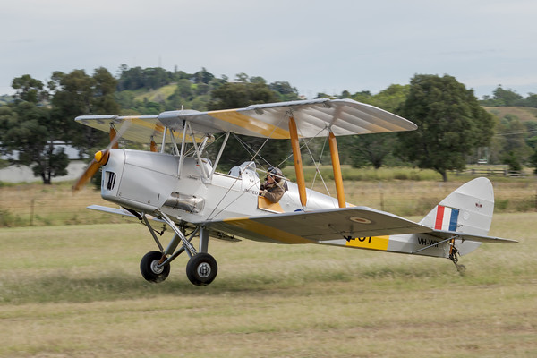 _7R46668 -  De Havilland DH.82A Tiger Moth VH-WII landing at the Airsport Qld breakfast fly-in.