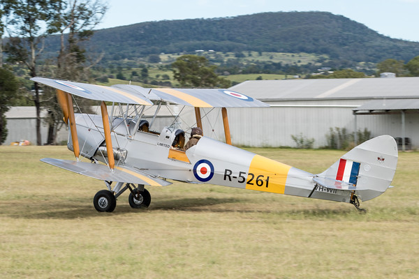 _7R46669 -  De Havilland DH.82A Tiger Moth VH-WII landing at the Airsport Qld breakfast fly-in.