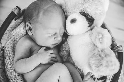 Calen Newborn-6bw