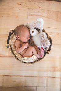 Calen Newborn-7